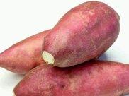 为什么人们喜欢用玉米炖排骨而不用土豆?听厨娘一席话,长知识了