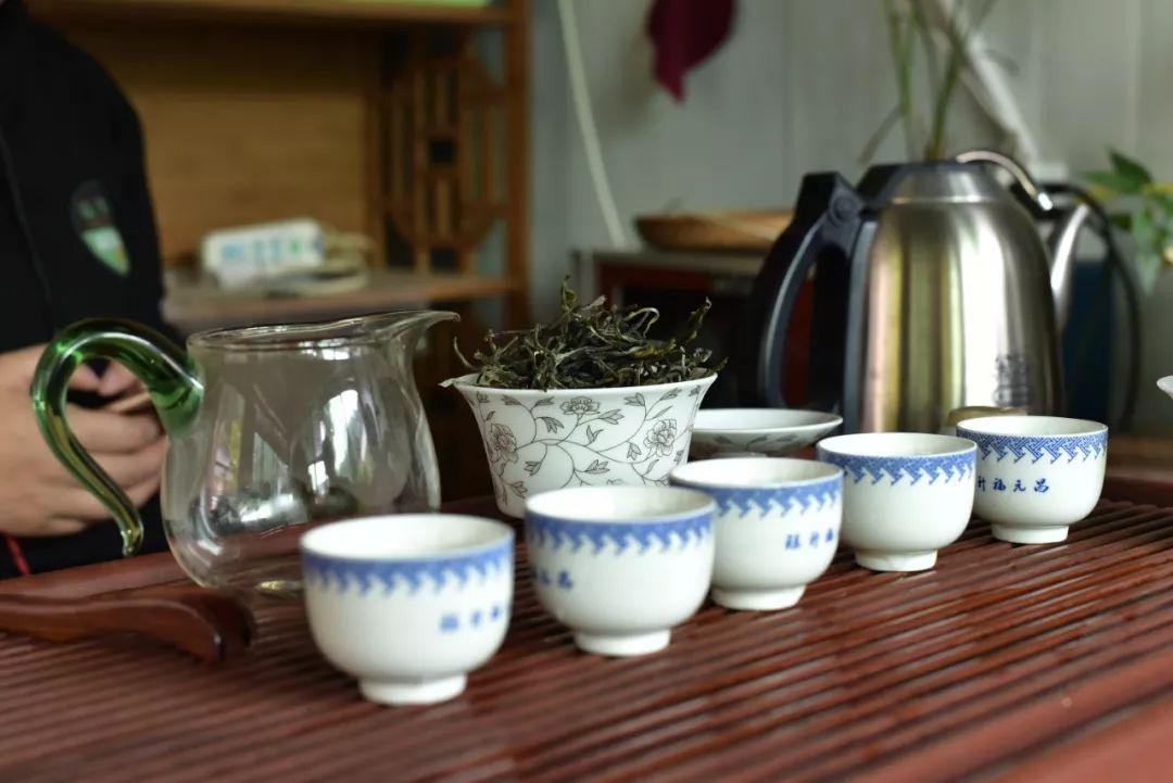 春茶怎么泡才好喝?