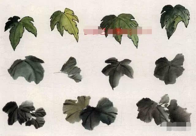 中国画基础知识,中国画技法之写意丝瓜,葫芦画法教程_图片