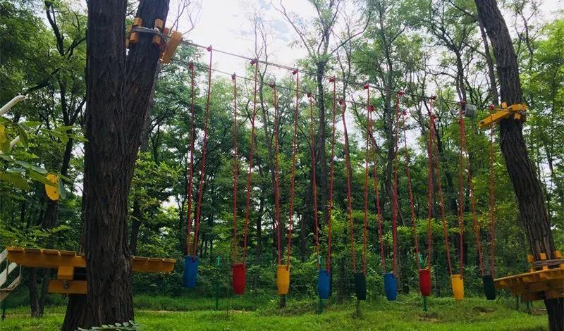 临邑真人cs 丛林穿越 高空体验尽在这里!图片