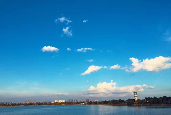 夏季的武汉汤逊湖,美过山东水境江南六合鸡爪图片