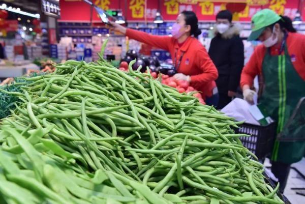 白菜有点儿贵?别慌,大批量白菜即将上市,而且质优价平