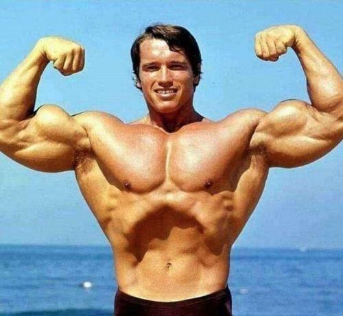 施瓦辛格对健身者的3个建议,一些人忽略了基础训练