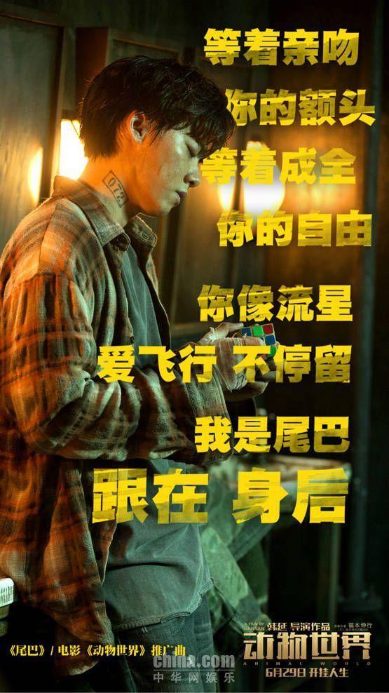 李易峰跪地求婚周冬雨 苏运莹献声《动物世界》