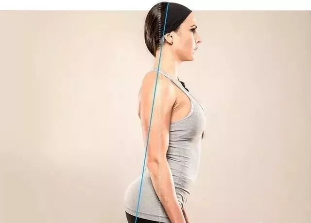 大腿骨盆结构示意图