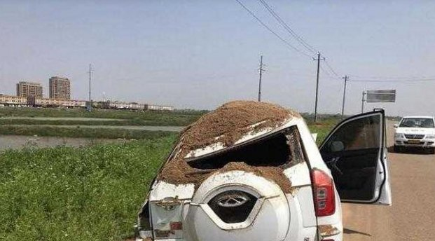 奇瑞撞上沙土车,网友:多亏是奇瑞,别的早完了
