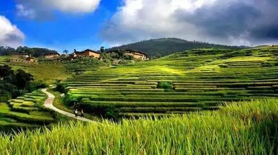 从欧洲农业看中国休闲农业与乡村旅游的建设案