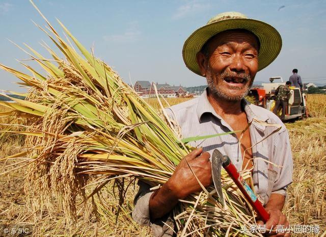 中国农民丰收节,中国农民自己的节日