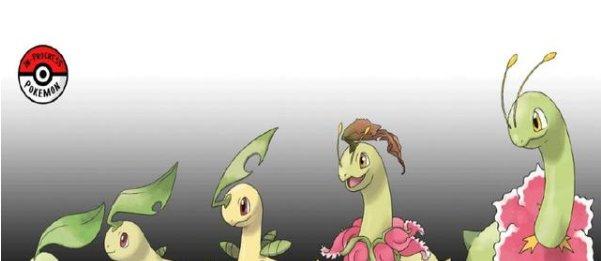 宝可梦进化全过程,怪力兄贵,隆隆石鬼畜,看到椰蛋树:原来如此