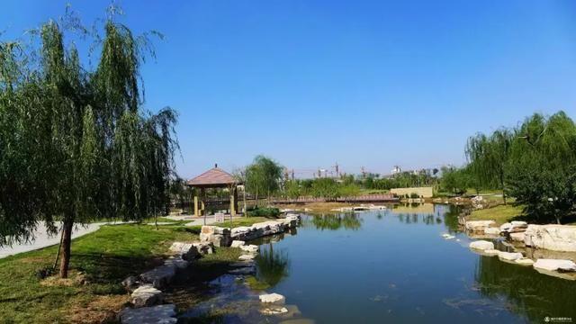 学府公园,唐槐公园,五龙城郊森林公园,东山生态园以及双塔寺景区公园