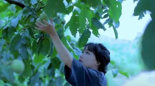 <b>勇敢向着梦想努力,李子柒从容淡定心境,煮制一碟古典辣酱</b>