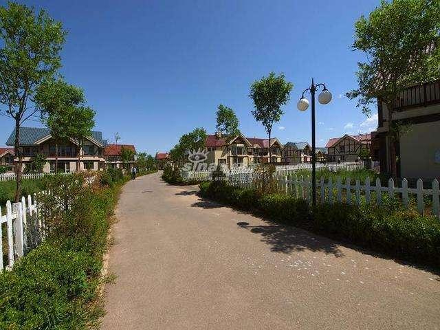 衡水市整治农村人居环境建设美丽乡村