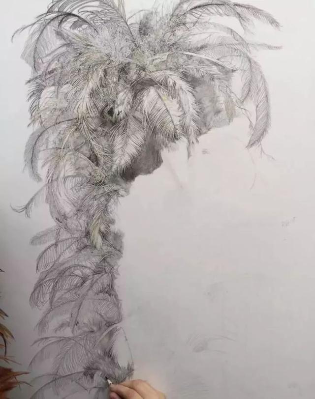 中央美术学院学生的精微素描作业,这才叫画画!
