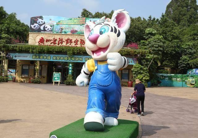长隆野生动物园最大的特色就是乘坐缆车游园以及小火车游园/自驾游.