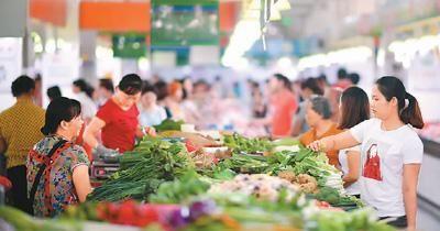 我國每年蔬菜集約育苗2000億株(圖)