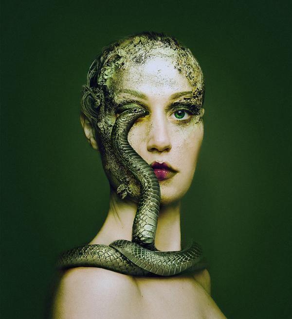 如果人类拥有一只动物的眼睛,那会是怎样的感受?
