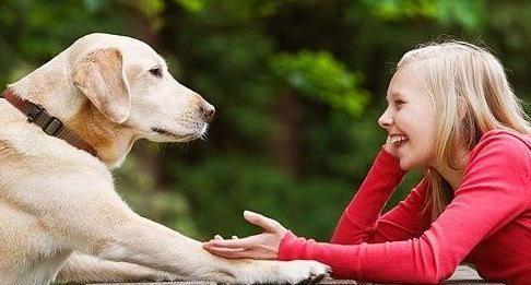 """我们应如何告诉狗狗""""我爱你""""?你的这些行为,它会感受到的"""
