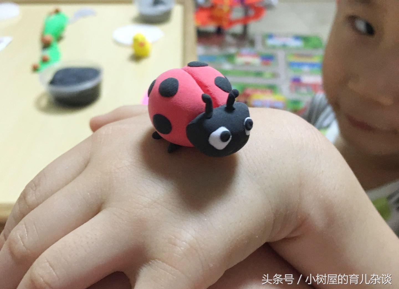 培养孩子专注力,一起做亲子手工---超轻粘土小瓢虫 步骤1:准备材料,三个颜色的超轻粘土,粘土刀。可以让孩子挑选自己喜欢的颜色。  培养孩子专注力,一起做亲子手工---超轻粘土小瓢虫 步骤2:让孩子取出红色粘土,揉搓成一个大圆球。之后用粘土刀在中间轻轻压一道,这步可以家长来配合完成。如图。  培养孩子专注力,一起做亲子手工---超轻粘土小瓢虫 步骤3:做瓢虫的头部,让孩子取黑色粘土,揉搓成小圆柱形,如图。  培养孩子专注力,一起做亲子手工---超轻粘土小瓢虫 步骤4:小圆柱形粘贴到红色瓢虫身体上,如图。