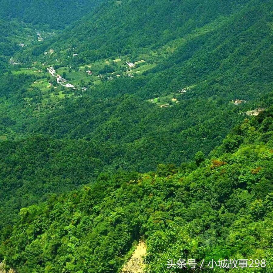 面积3250平方公里,林地占85%以上,森林覆盖率69.5%.