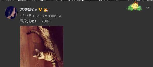 汪峰大女儿发自拍视频圈粉无数,没想到她私下这么美!