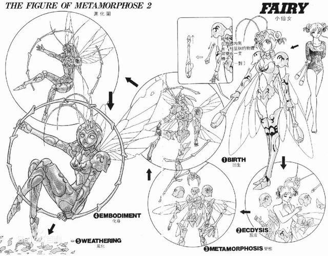 那一年折翼的《静漫画翔》,到底讲了斗士a漫画故事红豆图片