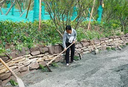 """龙泉山城市森林公园又一景观将完工,领略""""古驿十二景"""""""