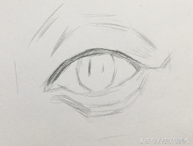 1、眼睛的绘画主要是眼球,从这张图能够看出上眼皮下眼皮包裹整个眼球的感觉!注意!眼球不是中间的眼珠,而是包括眼白、眼珠、瞳孔、玻璃体的整个的球。 2、注意去理解结构线,结构线非常重要,因为我们后期塑造的时候线条都是顺着结构线的方向绘画的。 3、注意去分体面,了解了结构线应该就能够清楚体面关系,那么高光到亮灰的渐变其实是体面朝向的变化。 这些就是小编总结出的眼睛绘画要点,也是小编以前在考学的时候常常会犯的问题!所以分享给大家希望能够给大家带来帮助! 最后希望大家继续关注感叹号美术!每天都有美术相关的教程以及