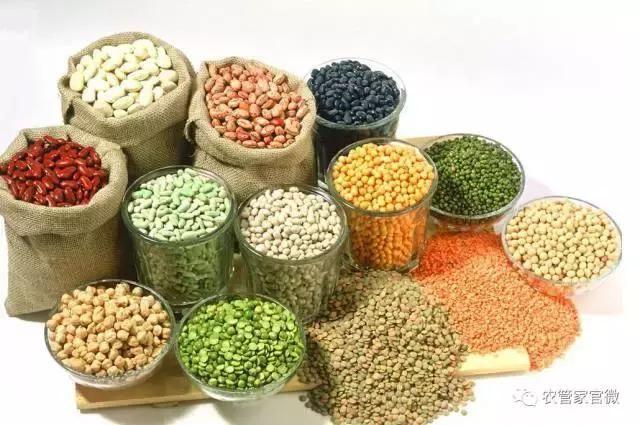 国家粮食局局长:国办印发《意见》着力增加绿色优质粮食供给图片