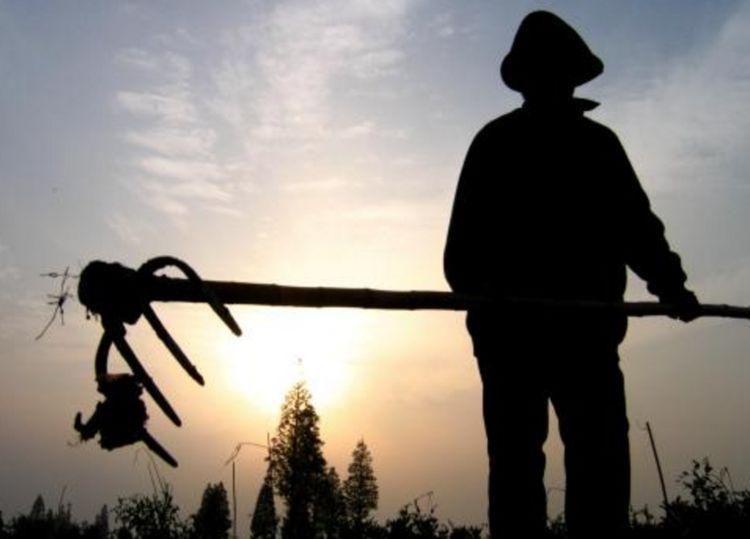 中国还有多少农民?老乡:家里四个务农的走了三