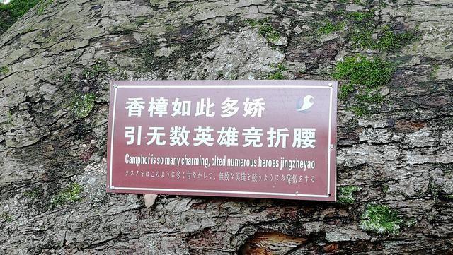 中国第一风水村在哪里?江西兴国县三僚村景点