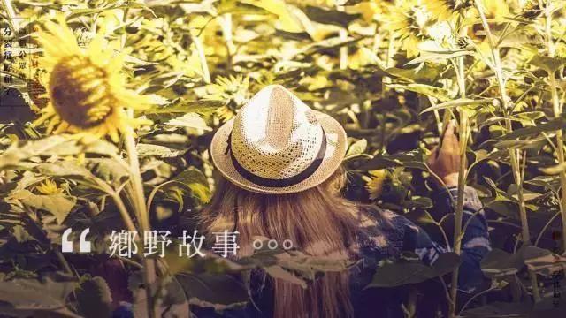 论排版设计,中文字体排版设计是厉害的数字单片机音乐盒设计图片