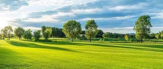 特价泳池高尔夫温泉别墅,不是卖楼,去v特价而已花湖汀别墅图片
