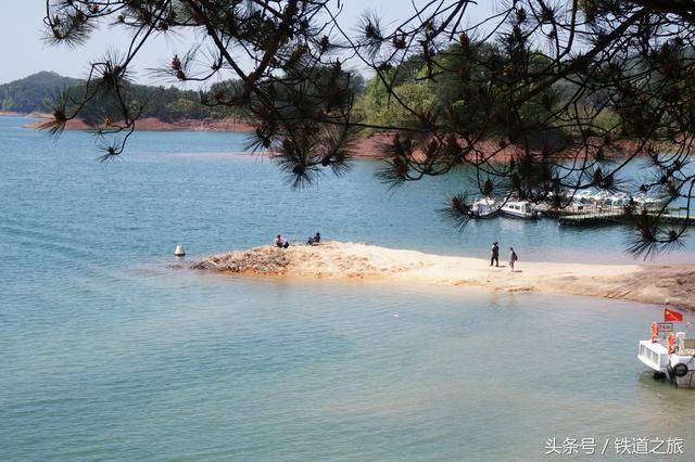 旅游 正文  千岛湖的特产-松花糕