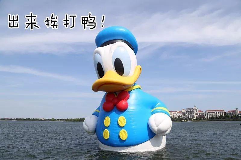 几十万人花钱买票只为一睹大黄鸭的真容 而这一次的世界最大唐老鸭图片