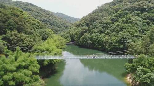 """桂山风景区依山环水抱,风光优美,素有""""植物王国,动物乐园,旅游天堂"""""""