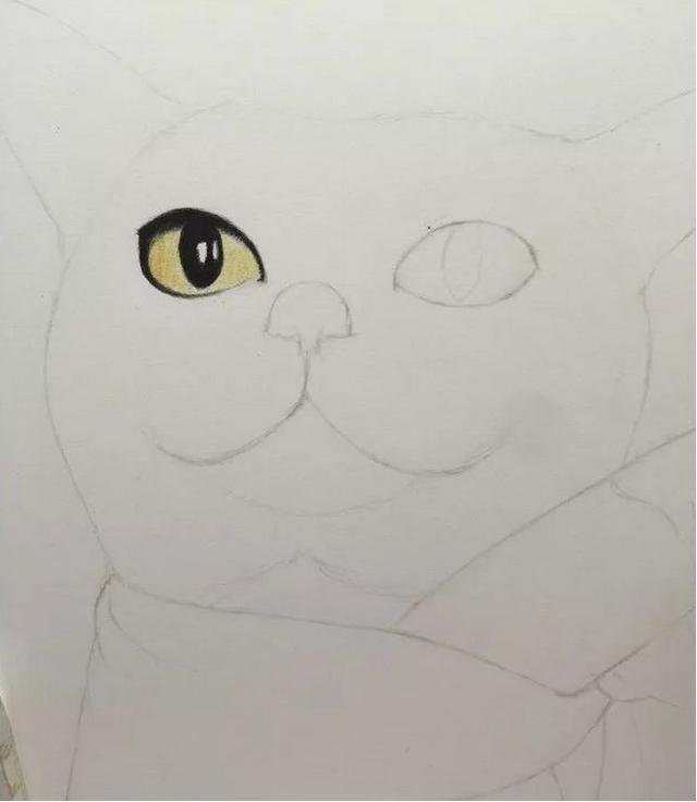 现在养猫的人越来越多,却很少有人会给自家猫咪画像,今天我就来教大家用彩铅画一只可爱的猫咪!  需要准备水溶性彩铅;彩铅纸。  第1步:用铅笔构图,画出猫咪的轮廓。  第2步:用黑色笔画出猫咪的眼睛,用柠檬黄画出瞳孔。  第3步:用黄褐色叠加瞳孔,让猫咪的眼睛更有立体感。  第4步:用印度红画出猫咪鼻子的深色轮廓,然后用深肉色涂画猫咪鼻子的浅色部分。  第5步:顺着猫咪的毛发走向,从深到浅涂色。头部可以用冷灰色过渡涂色,耳朵可以用黄褐色和冷灰色叠加涂色。  第6步:将铅笔削尖细,这样可以塑造毛发高亮。用白