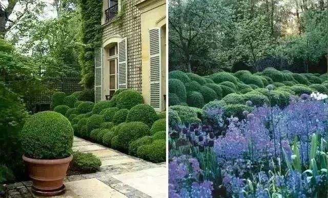 时尚 正文  由于具有比较规则的几何形态,造型植物可以直接与硬景搭配