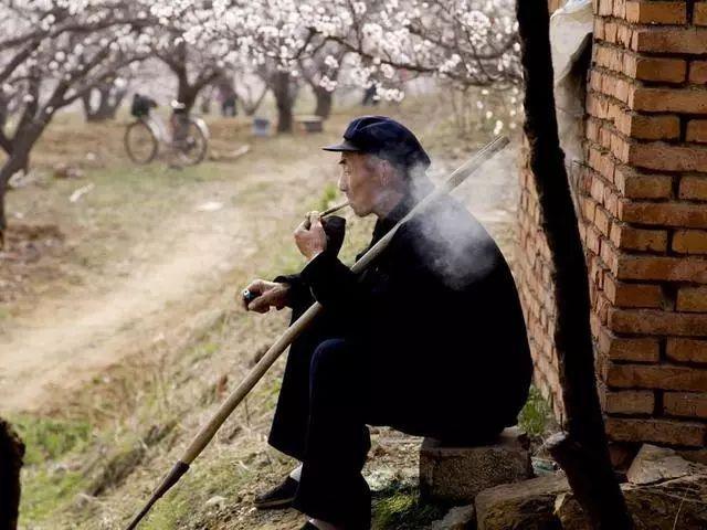 农村有句俗语 青皮萝卜紫皮蒜,仰脸婆子低头汉