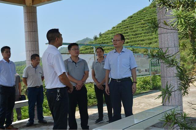 广西壮族自治区人民政府办公厅到贵港开展富硒