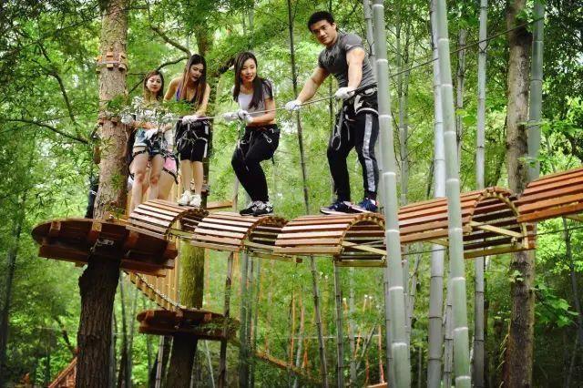 来石燕湖体验不一样的丛林穿越吧图片