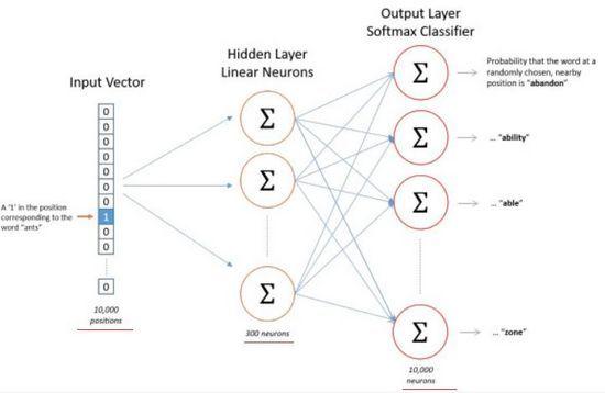 一文了解Word2vec之Skip-Gram训练网络的3种