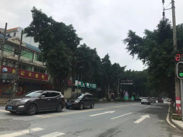 广东KTV大火中凋零的18条生命