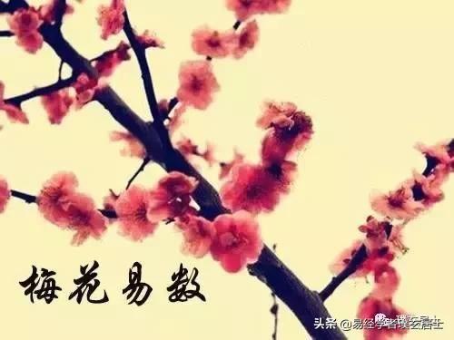 易学资料:梅花易数断卦方法