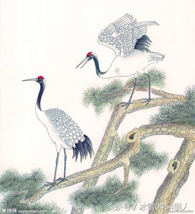 国画仙鹤图,姿态雍容,仙风道骨,益寿延年