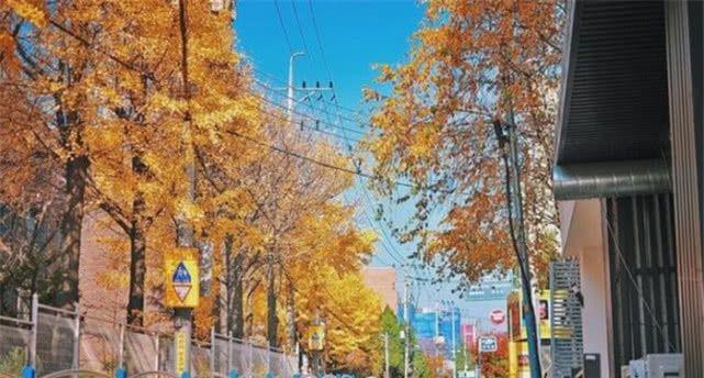 """韩国第一大城市""""首尔"""",放在我国是什么水平?看完你就知道了"""