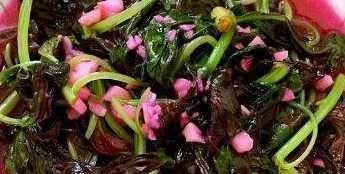 多吃这三种野菜能清热解毒消炎止渴滋阴润燥!