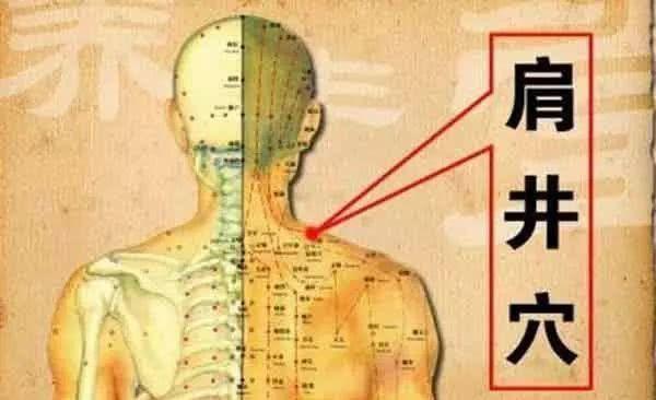 """颈椎病的""""克星"""",肩井穴!_【快资讯】"""