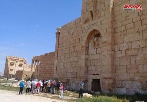 叙利亚消息:一法国旅游团访问并呼吁重建巴尔米拉考古遗址