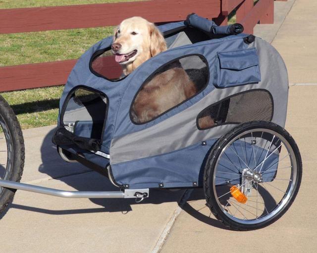 每次遛狗都跑断气?或许你可以试试让狗狗随自行车行