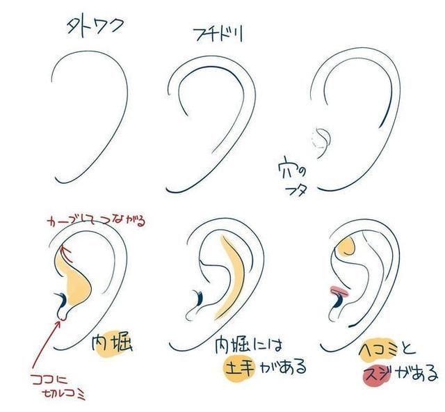 精品游戏原画插画动漫人物五官耳朵绘画技巧